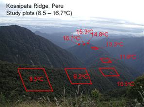 Kosnipati Ridge