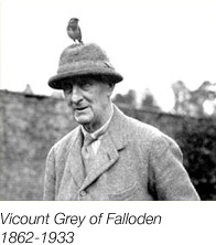 Viscount Grey