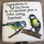 Perrins 60th Anniversary cake