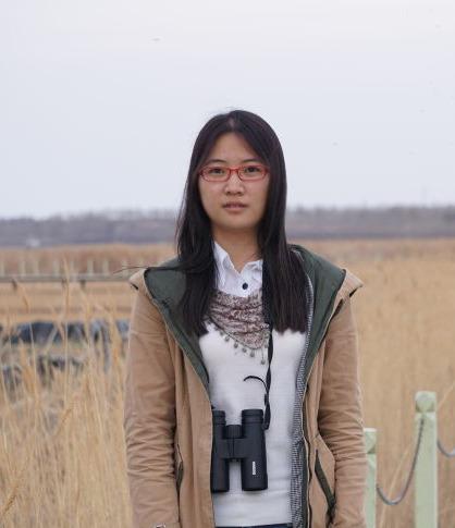 Jie Wei